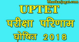 UPTET exam results declared, see here