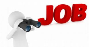 Recruitment on 70,000 posts for UP teacher, from here to apply