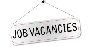 Bimper recruitment for Bihar Forest Guard recruitment, direct application from here