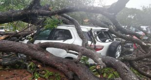 Devastating devastation in Odisha caused by storms, more than 200 injured